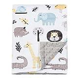 BORITAR Baby Blanket for Boys Girls Soft Minky...