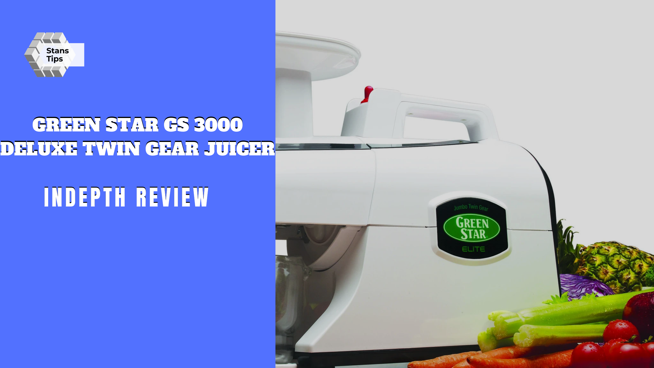 Green star gs 3000 deluxe twin gear juicer review